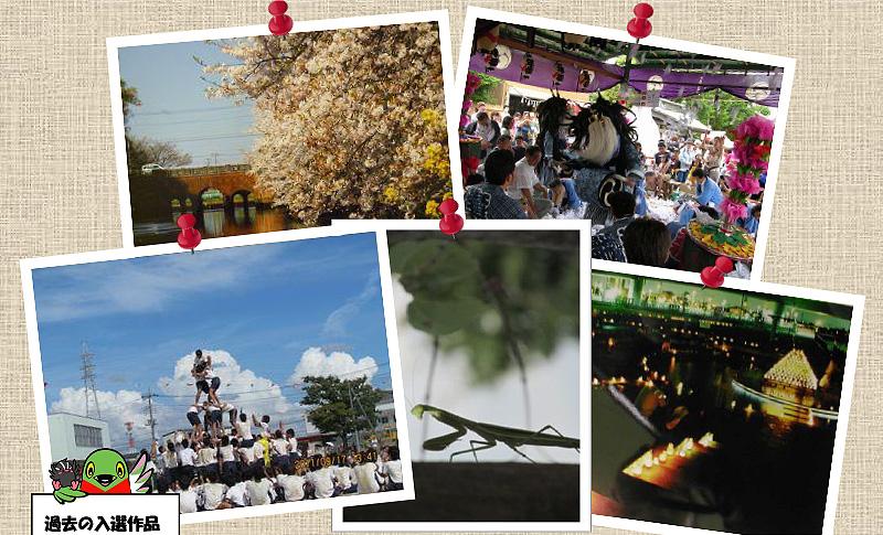 第17回三郷市観光写真コンテスト入賞作品